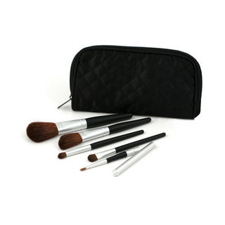 Pur Minerals Pur-fect Makeup Brush Collection