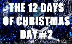 THE 12 DAYS OF CHRISTMAS: Day #2