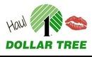 Dollar Tree Haul: Jan 24 2014