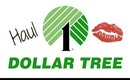Dollar Tree Haul [June 18 2014]