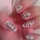 Circus Leopard