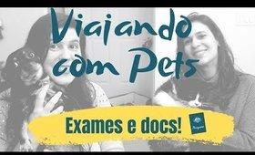 VIAGEM internacional com cachorro e gato #1 | Exames e Documentos