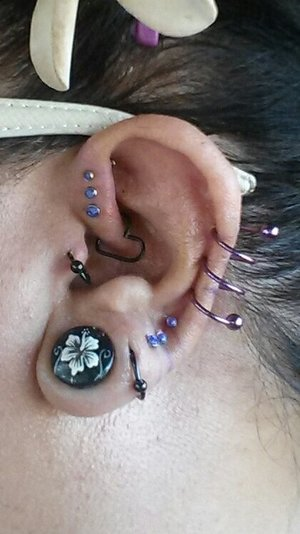 Size 9/16 gauge, hoop, 3 descending size opal studs, triple twister, 3 descending size opal forward helix studs, daith heart, hoop tragus. This was right after I got several of these - you can still see the pen markings on my ear! I need to post an updated pic; the purple twist has now relaxed a bit and I'm able to move it.