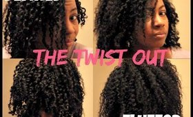 Defined Twist Out vs Fluffed Twist Out | Fine Natural Hair
