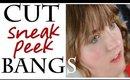 How to CUT SNEAK PEEK BANGS