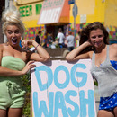 At the Dog Wash!