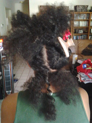 Sectioning before Redken Smooth Lock texture service is applied. Photo 1.