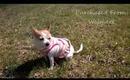 Easter OOTD: Pink Striped Hoodie
