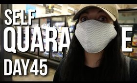 Self Quarantined Day Vlog 45 : Food Shopping 45 days Later