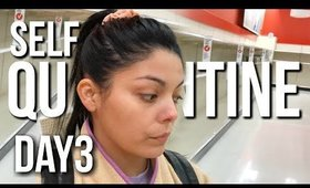 Self Quarantined Day 3 Vlog : My Grocery Pick Up Experience