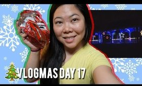 🎄 VLOGMAS DAY 17: REINDEER POOP, FREE LIGHTS AT CELEBRATION IN THE OAKS | MakeupANNimal