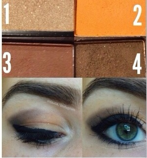 "1) Blend into your inner corner & from tear duct to center of your eye for a highlight.  2) Put on your entire eye lid to act as a base.  3 & 4) Put 3 on the V of your eyelid first and blend it in with 2, then blend 4 on the outside of it and smoke it out.  If you want a ""smokey"" look, put 4 on the other half of your water line and smudge it in with your eyeliner like I did."