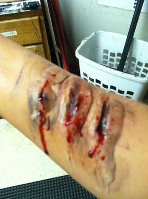 my first attempt at special effects makeup ! not too horrible but i can only get better :)