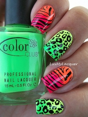 Acrylic nails with animal prints & bright colors oh my!!;)