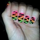 Bright zebra!