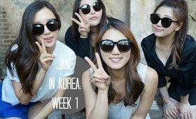 Come Follow me: Jane in Korea | Week 1