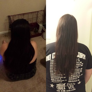 I dyed and cut her hair on 07/06/13 Hair dye color was Revlon Medium Rich Brown