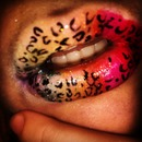 Cheetah rainbow print