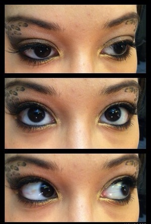 """I'm a beginner in makeup & I decided to try the Animal Print look. Since I'm letting my eyebrows grow... I thought it would be the perfect time to do the Animal Print on my """"furry"""" brows...lol"""
