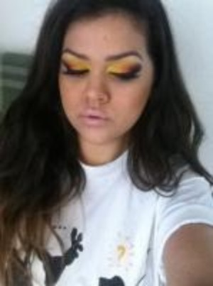 sorry its blurry, i used bsc corrector in light as a eyeshadow base then used bhcosmetics 120 palette and nyx pump it up lip plumper