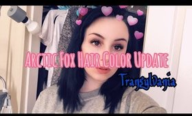 Hair Color Update|| arctic fox Transylvania