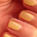 Yellow and Gold Gradient