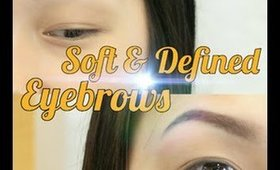 Soft And Defined Brows