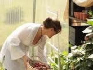 More time in greenhouse - picking plant essences