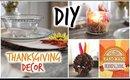 DIY Thanksgiving Decor! Cute & Affordable