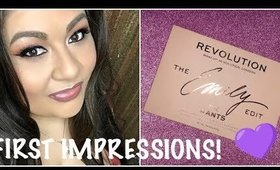 The Wants Palette First Impressions - Why We Should Support RevolutionxEmily