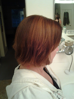Highlights colored with Redken Chromatics 5c(copper)