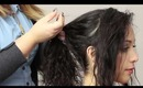 Curly Hair Ponytail Tutorial
