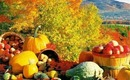 Healthy Fall Foods to Make You Look & Feel Great! PhillyGirl1124 on YouTube!
