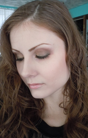 Look using Coastal Scents Go Palette Paris