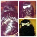 bow & bun 💝