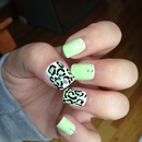 Mint green and leopard